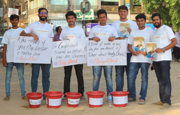 Crowdfunding Startup Impact Guru Initiates Pledgeabowl Campaign to Raise Funds to Provide Animal Welfare NGOs With Bowls to Store Drinking Water for Street Animals and Birds