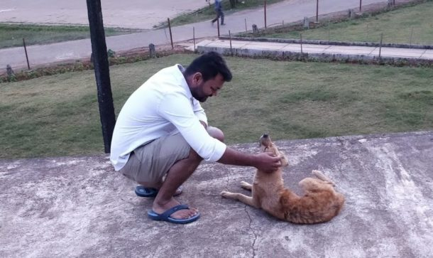 This Bengaluru Based Pet Care Startup Aims to Upgrade and Consolidate the Service Standard of the Local Un-organized Market