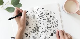 Tips to keep in mind to establish a successful startup