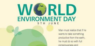 Environment protection calls for a multi-pronged attack - Warrior Dr. Srinivasan