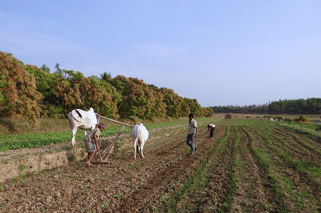 Data shows that the growth of rural India creates a new fulcrum of opportunities