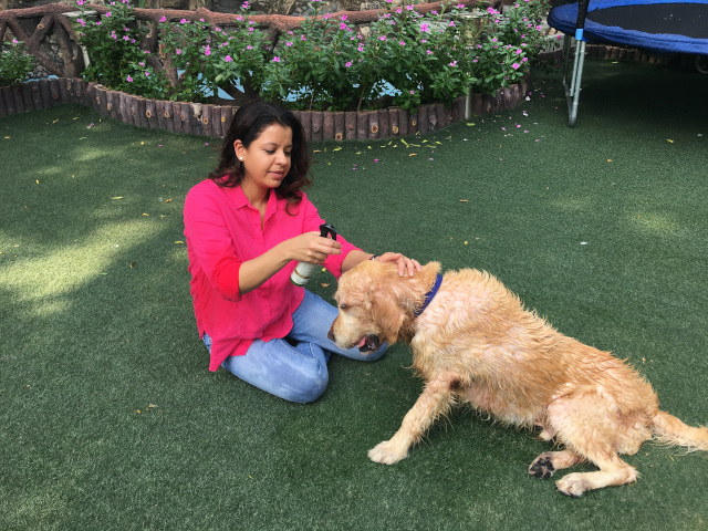 Kamakshi Kumar – Co Founder of Petveda