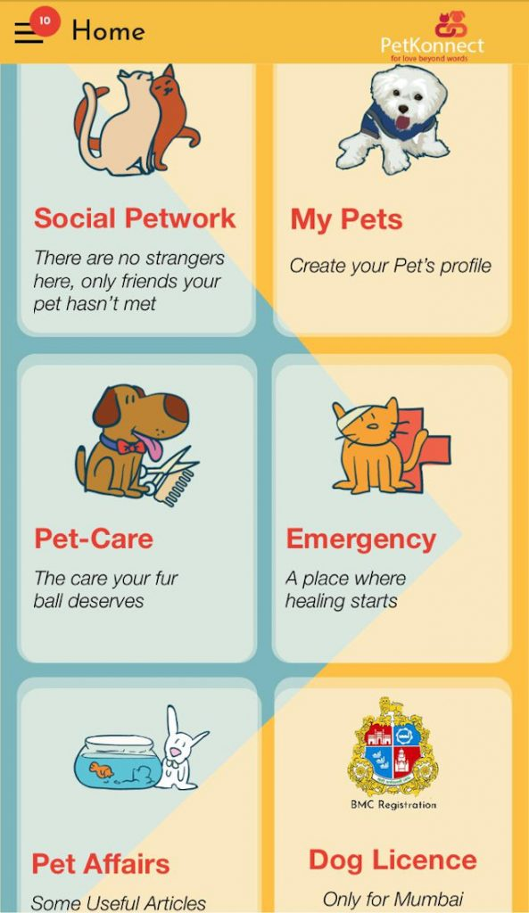 PetKonnect App - Services Page